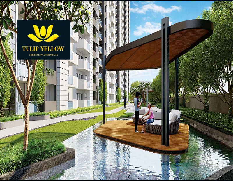 Paradise Consulting Tulip Yellow Sector 69 Gurgaon Tulip Yellow Sector 69 Gurgaon